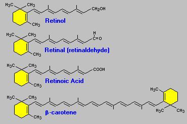 ретинола пальмитат и ретинола ацетат для волос